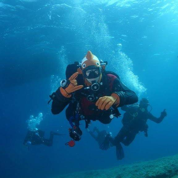 "Diving in Croatia, diving center, courses, tourism ""Amber"""
